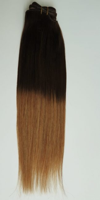 Ombre clip on extensions